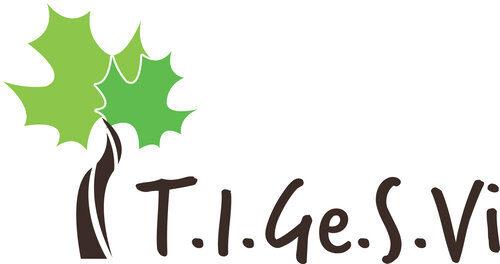 Progetto T.I.Ge.S.Vi